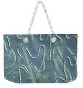 Nostoc Algae Weekender Tote Bag