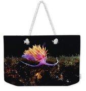 Nudibranch Brightly Colored Arctic Ocean Weekender Tote Bag