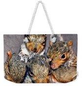 Nut Brothers Weekender Tote Bag