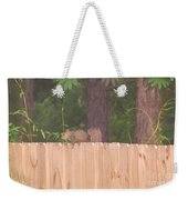 Nuts For A Squirrel Weekender Tote Bag