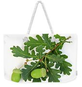 Oak Branch With Acorns Weekender Tote Bag by Elena Elisseeva