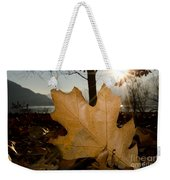Oak Leaf In Backlight Weekender Tote Bag