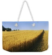 Oat Crops On A Landscape, County Dawn Weekender Tote Bag
