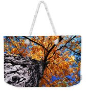 Old Elm Tree In The Fall Weekender Tote Bag