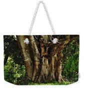 Old Fig Tree Weekender Tote Bag by Kaye Menner