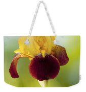 Old Time Two Toned Burgundy And Gold Iris Weekender Tote Bag