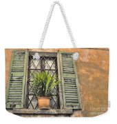 Old Window And A Green Plant Weekender Tote Bag