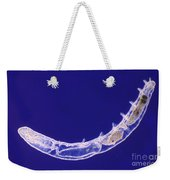 Oligochaete Worm Weekender Tote Bag