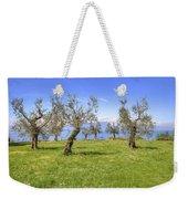 olive grove on Lake Gardan Weekender Tote Bag