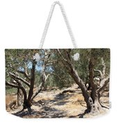 Olive Trees At Sebastia Weekender Tote Bag