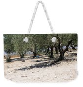 Olive Trees In Sebastia Nablus Weekender Tote Bag