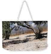 Olive Trees Standing Alone Weekender Tote Bag