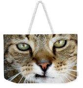 Oliver The Cat Weekender Tote Bag