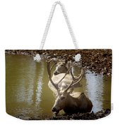 On A Hot Summers Day Weekender Tote Bag