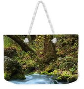 On The Banks Of Big Spring In The Missouri Ozarks Weekender Tote Bag