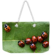 One Lady Bug Voted Off The Island Weekender Tote Bag