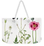 Opium Poppy And Other Plants  Weekender Tote Bag by  Elizabeth Rice