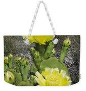 Opuntia Opuntia Sp Cactus Flowering Weekender Tote Bag