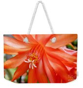 Orange Cactus Weekender Tote Bag