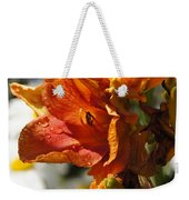 Orange Day Lilies In The Sun Weekender Tote Bag