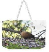 Orange Footed Scrub Fowl Weekender Tote Bag