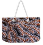 Orange Gorgonian Sea Fan With White Weekender Tote Bag