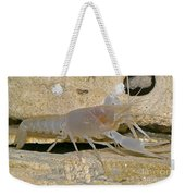 Orange Lake Cave Crayfish Weekender Tote Bag