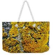 Orange Lichen - Xanthoria Parietina Weekender Tote Bag