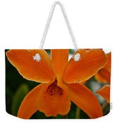 Orange Sherbert  Orchid Weekender Tote Bag