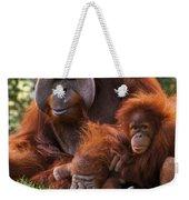 Orangutan Mother And Baby Weekender Tote Bag