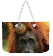Orangutan Pongo Pygmaeus Female Weekender Tote Bag