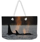 Orca Orcinus Orca Resident Pod Weekender Tote Bag