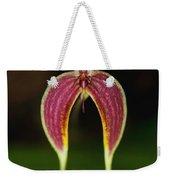 Orchid Bulbophyllum Blumei Flower Weekender Tote Bag