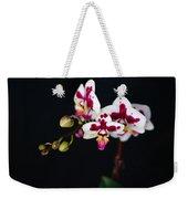 Orchid Flowers Against Black Background Weekender Tote Bag