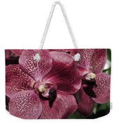Orchid Vanda And Ascocenda Hybrid II Weekender Tote Bag
