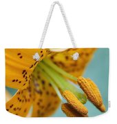 Oregon, United States Of America A Lily Weekender Tote Bag