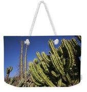 Organ Pipe Cactus Stenocereus Thurberi Weekender Tote Bag
