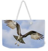 Osprey In Flight One Weekender Tote Bag