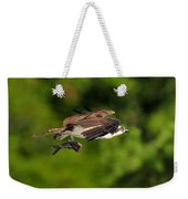 Osprey Inflight At Blue Cypress Lake Weekender Tote Bag