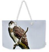 Osprey Weekender Tote Bag