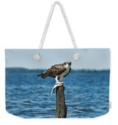 Osprey With Catch. Weekender Tote Bag