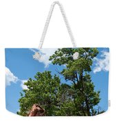 Outcropping Weekender Tote Bag