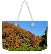 Over The Hedge Weekender Tote Bag