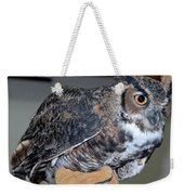 Owl Together Now Weekender Tote Bag by LeeAnn McLaneGoetz McLaneGoetzStudioLLCcom