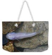 Ozark Blind Cavefish Weekender Tote Bag