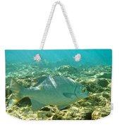 Pacific Chub 1080113.jpg Weekender Tote Bag