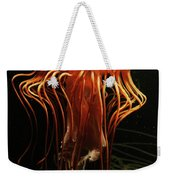Pacific Sea Nettle Chrysaora Weekender Tote Bag