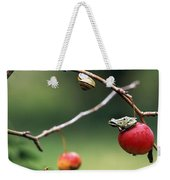 Pacific Tree Frog On A Crab Apple Weekender Tote Bag