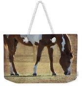 Paint Horse Weekender Tote Bag by Betty LaRue