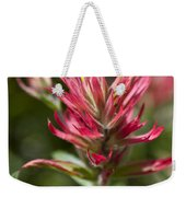 Painted-cups Of The Hillside - 3 Weekender Tote Bag